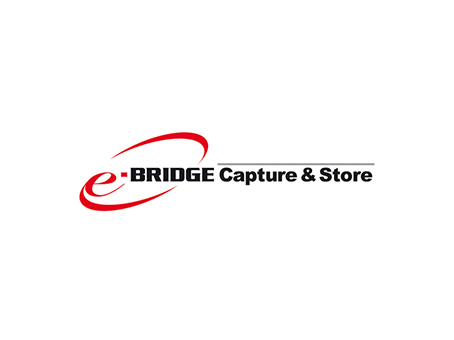 e-BRIDGE Capture & Store