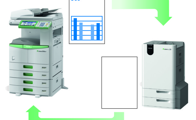 GraphicLastPage306LP_BR
